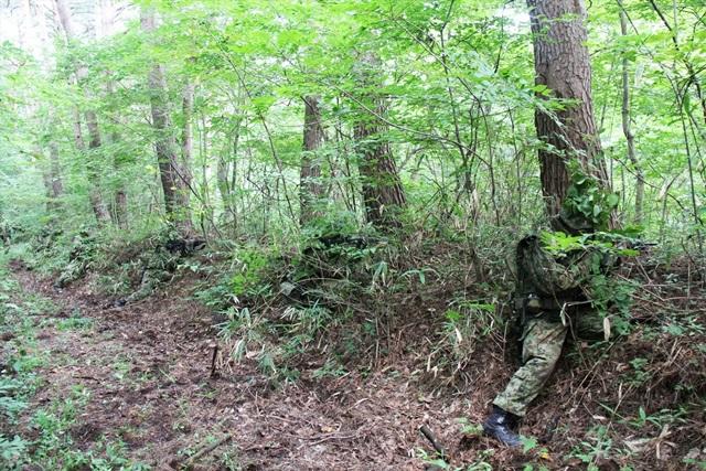 周辺の樹木と同化する自衛隊