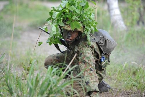 自衛隊教育課程